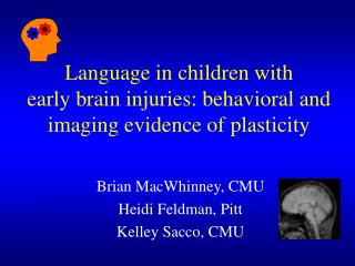 Language in children with  early brain injuries: behavioral and imaging evidence of plasticity