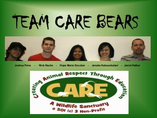 TEAM CARE BEARS