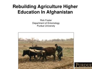 Rebuilding Agriculture Higher Education In Afghanistan