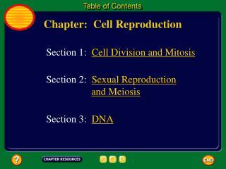 Chapter:  Cell Reproduction
