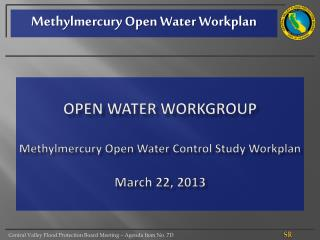 Open Water Workgroup Methylmercury Open Water Control Study Workplan March 22, 2013