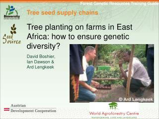 Tree seed supply chains