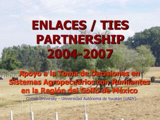 ENLACES / TIES PARTNERSHIP 2004-2007