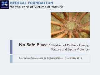 No Safe Place  :  Children of Mothers Fleeing Torture and Sexual Violence