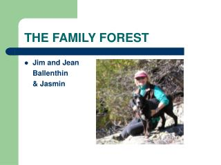 THE FAMILY FOREST