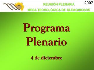 Programa Plenario 4 de diciembre