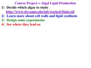 Course Project = Algal Lipid Production Decide which algae to study