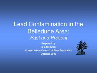 Lead Contamination in the Belledune Area: Past and Present