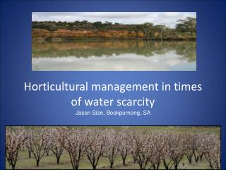 Horticultural management in times of water scarcity