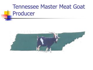 Tennessee Master Meat Goat Producer