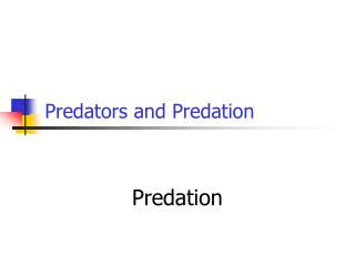 Predators and Predation