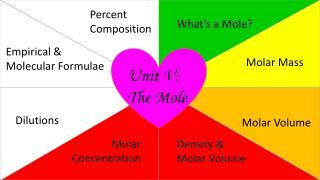 Unit V: The Mole
