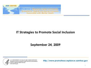 IT Strategies to Promote Social Inclusion