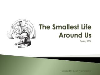 The Smallest Life Around Us