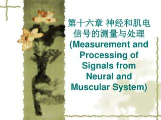 第十六章 神经和肌电信号的测量与处理 (Measurement and Processing of Signals from Neural and Muscular System)