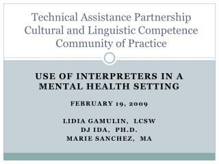 USE OF INTERPRETERS IN A MENTAL HEALTH SETTING FEBRUARY 19, 2009 LIDIA GAMULIN,  LCSW