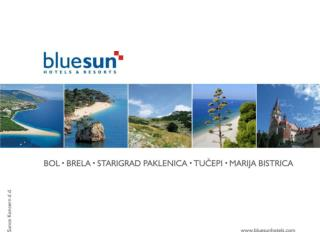 Bluesun hotels & resorts Zagreb, 2010.