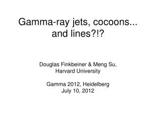 Gamma-ray jets, cocoons... and lines?!?