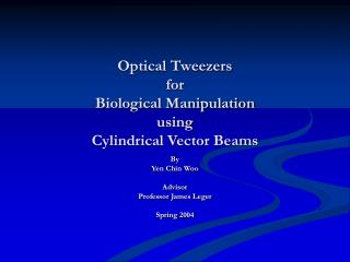 Optical Tweezers  for  Biological Manipulation  using  Cylindrical Vector Beams