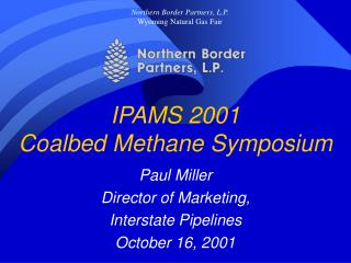 IPAMS 2001 Coalbed Methane Symposium