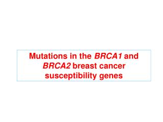 Mutations in the  BRCA1  and  BRCA2  breast cancer susceptibility genes
