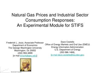 Natural Gas Prices and Industrial Sector Consumption Responses: An Experimental Module for STIFS