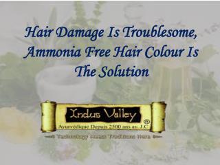 Ammonia Free Hair Colour @ 9873 18 1111