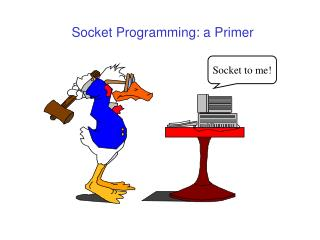 Socket Programming: a Primer