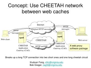 Concept: Use CHEETAH network between web caches