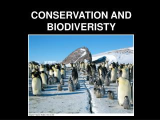 CONSERVATION AND BIODIVERISTY