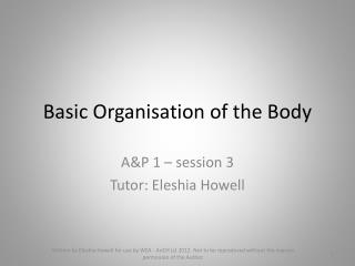 Basic Organisation of the Body
