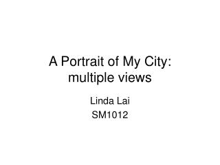 A Portrait of My City: multiple views