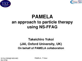 PAMELA  an approach to particle therapy using NS-FFAG