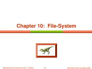 Chapter 10:  File-System