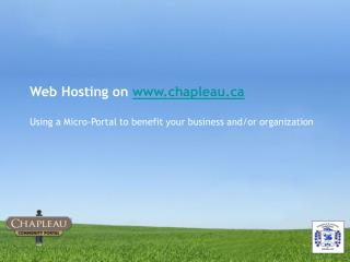 Web Hosting on  chapleau Using a Micro-Portal to benefit your business and/or organization