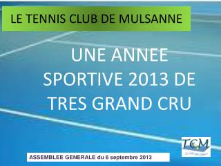 LE TENNIS CLUB DE MULSANNE