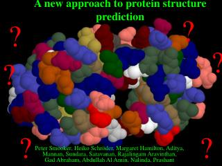 A new approach to protein structure prediction