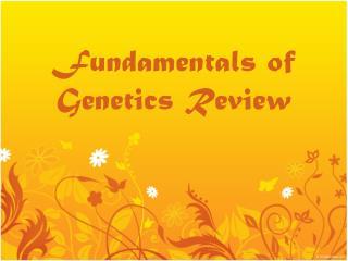 Fundamentals of Genetics Review