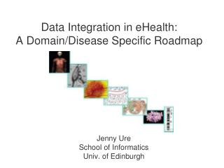 Data Integration in eHealth:  A Domain/Disease Specific Roadmap