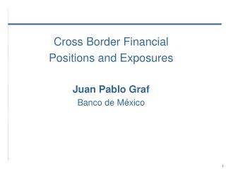 Cross Border Financial  Positions and Exposures Juan Pablo Graf Banco  de México