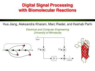 Digital  Signal  Processing  with  Biomolecular  Reactions