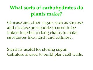 What sorts of carbohydrates do plants make