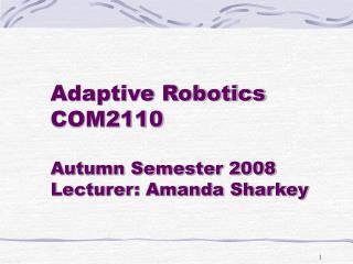 Adaptive Robotics COM2110 Autumn Semester 2008 Lecturer: Amanda Sharkey