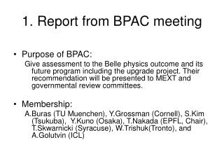 1. Report from BPAC meeting