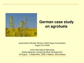 German case study  						on agrofuels  presented by Mireille Hönicke, BUKO Agrar Koordination