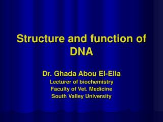 Structure and function of DNA