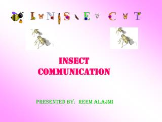 Insect communication Reem Alajmi Presented by :