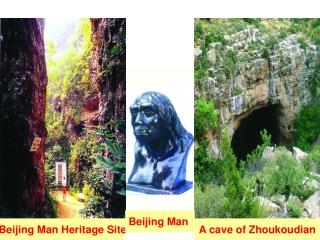 A cave of Zhoukoudian