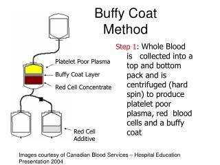 Buffy Coat Method