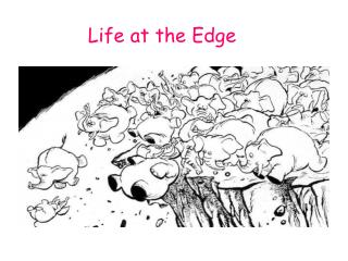 Life at the Edge